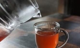 Чайний гриб: догляд і користь