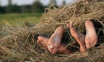 Що робити, якщо слабка потенція - рослини, трави і масаж для підвищення потенції