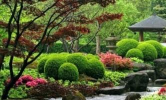 Гарний сад і город своїми руками