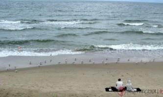 Недорогий сімейний відпочинок в криму