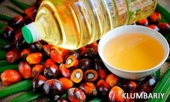Чи корисно пальмову олію для здоров`я