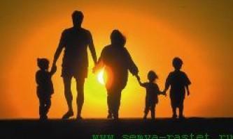 Велика родина - щастя чи важка праця