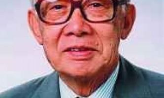 Теорія Масару Ібука