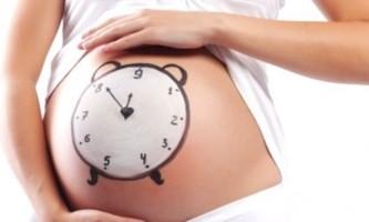 Внутрішньоутробний розвиток малюка від зачаття до народження