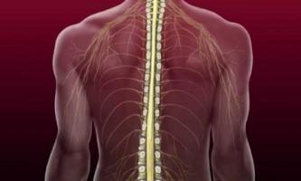 Відновлення та реабілітація після компресійного перелому хребта ... Роз`яснює фахівець