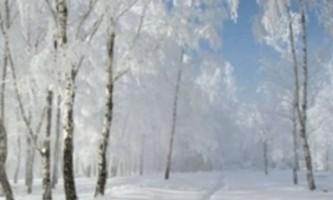 Зима - саме час худнути